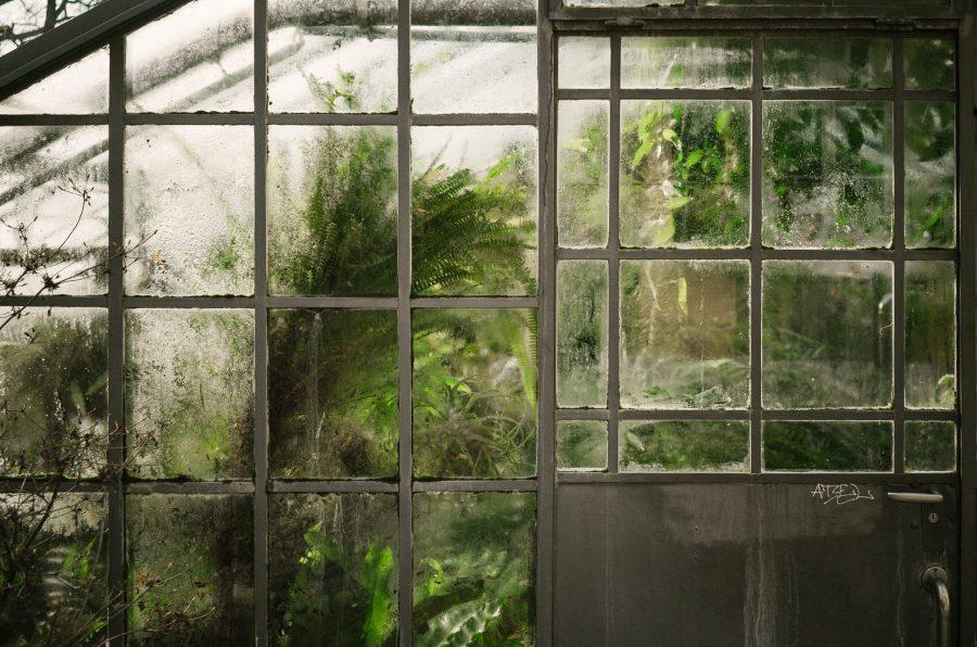 Jardiner sous serres en hiver